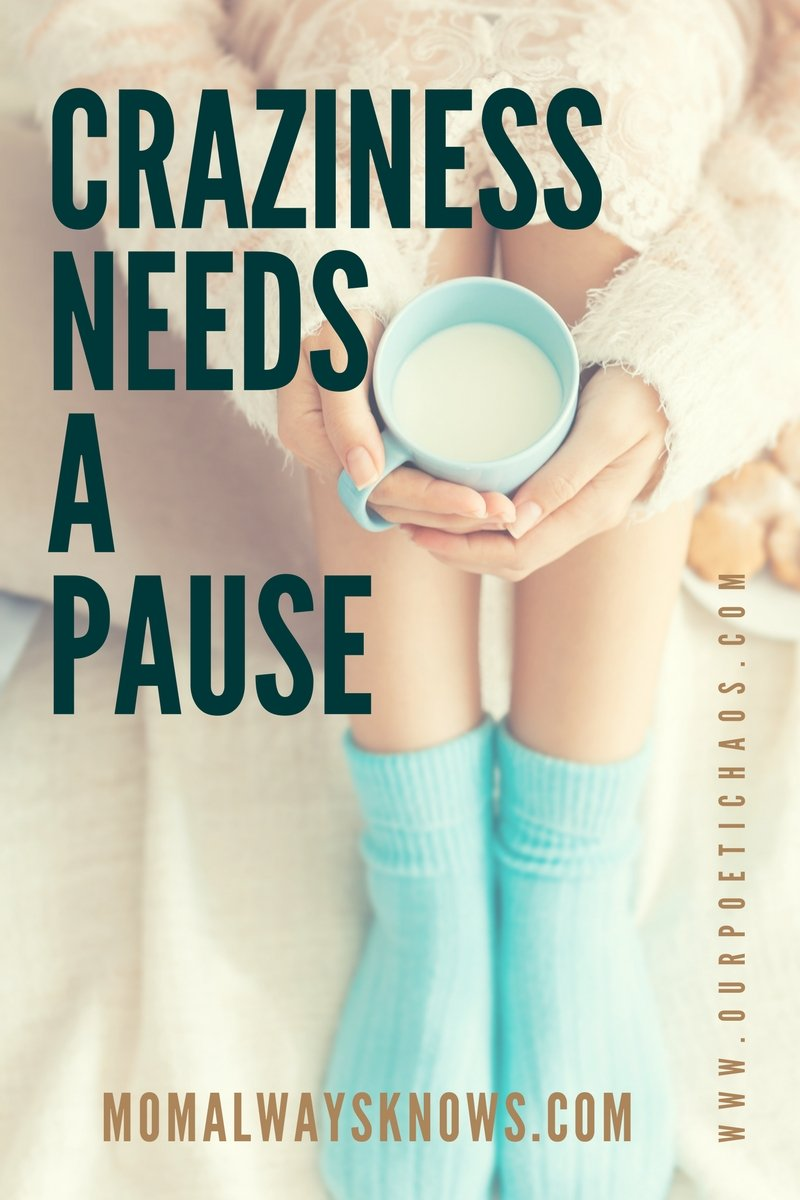 CRAZINESS NEEDS A PAUSE by Megan