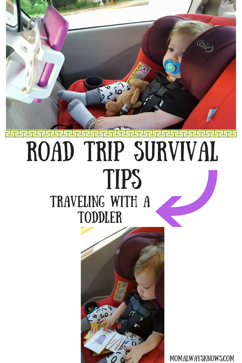 Road Trip Survival Tips for Traveling With a Toddler