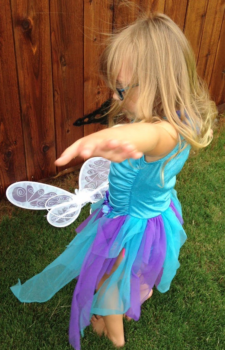 Little Dress Up Shop.com fairy dress