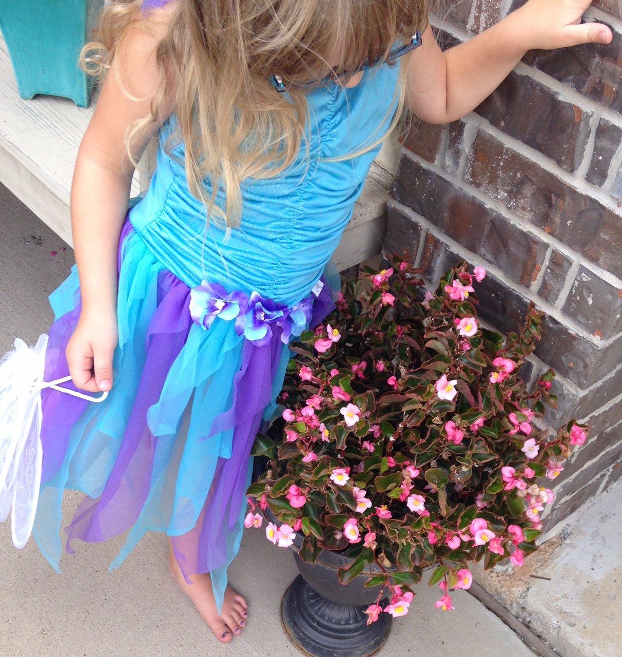 glitter free princess dress