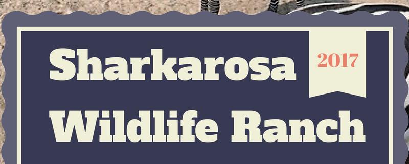 review of sharkarosa wildlife ranch