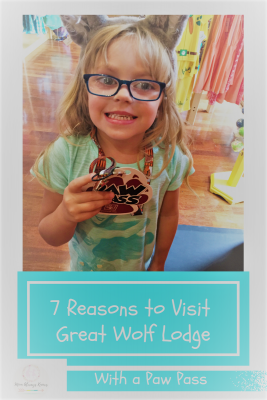 7 Reasons You Should Visit Great Wolf Lodge (with a Paw Pass)