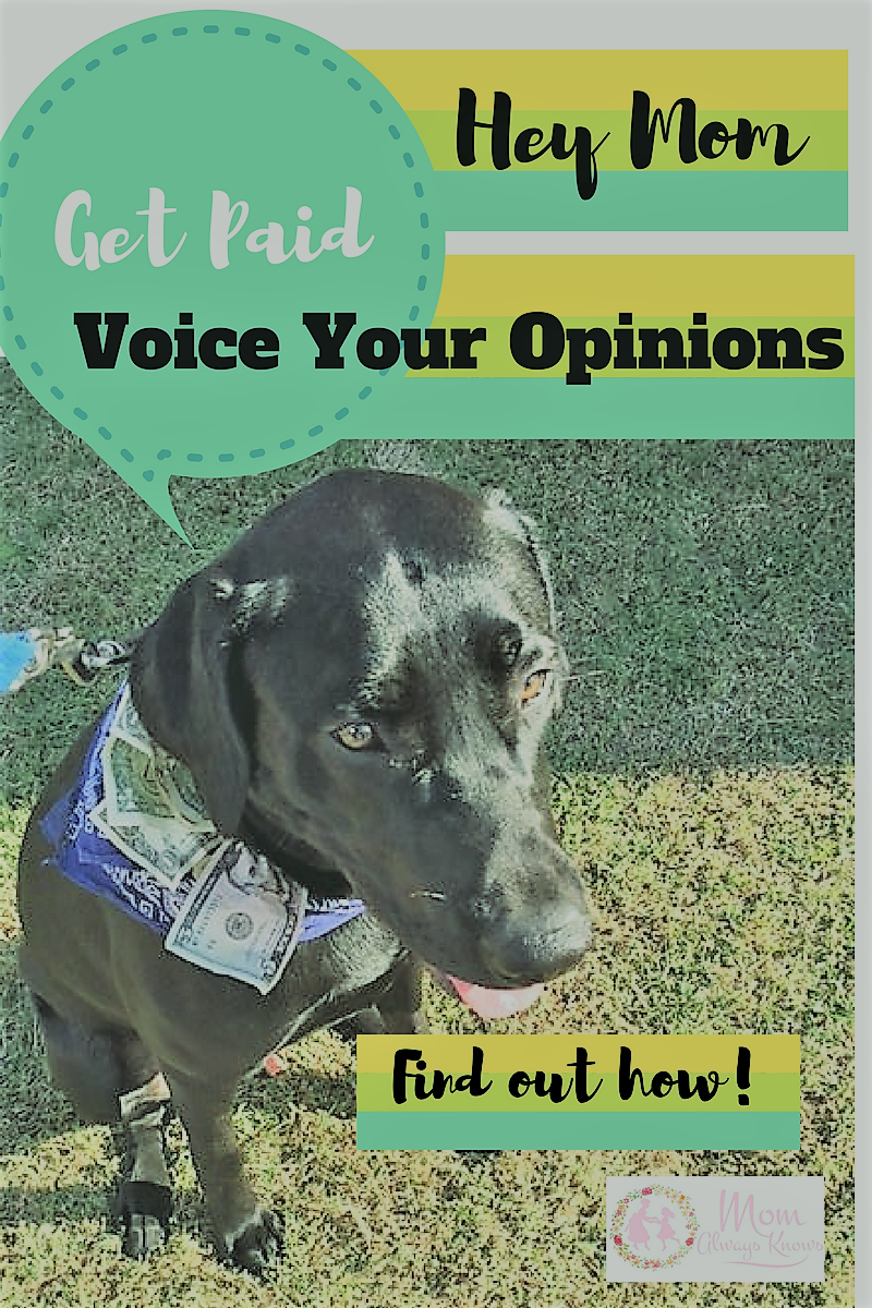 Hey Mom- Get Paid to Voice Your Opinion with Opinion Outpost Surveys