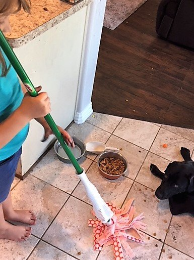 pet-related chores for kids