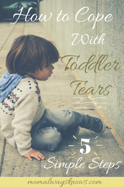 How to Cope with Toddler Tears – 5 Simple Steps