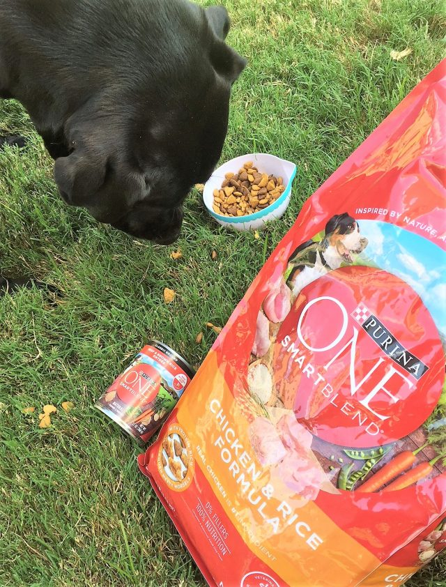 purina smartblend 28 day challenge