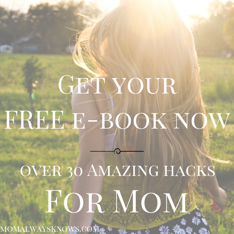 free ebook mom hacks